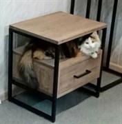 Кошка ГСК Околица