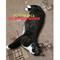 Кошка на Хо Ши Мина - фото 8904